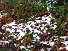 Anglų lietuvių žodynas. Žodis thawing reiškia atšildymas lietuviškai.