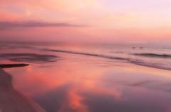 Pink sunset at Siesta Key FL (die Augen) Tags: pink canon sl1 siestakey florida sunset
