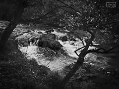 Río Dobra/ Dobra river (Jose Antonio. 62) Tags: spain españa asturias dobra río river bw blancoynegro blackandwhite