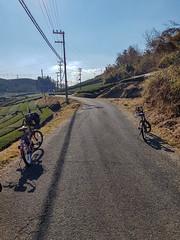 Wazuka, Town of Tea (mintsanddreams) Tags: holiday trip photography photo photos japan wazuka town tea green fields cycling bicycle blue sky houses kyoto road travel sightseeing