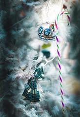 El final de fiestas.. (josechino2424) Tags: fiestas navidad josechino2424 humanesdemadrid