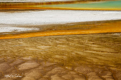 Grand Prismatic_27A0631 (Alfred J. Lockwood Photography) Tags: alfredjlockwood nature abstract grandprismatic microbialmat geothermalrunoff geothermalpool extremophiles thermophiles color patterns shapes texture midwaygeyserbasin yellowstonenationalpark summer morning wyoming