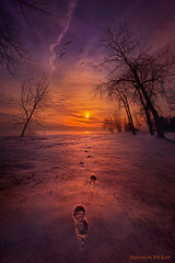 So Close No Matter How Far (Phil~Koch) Tags: serene morning dawn nature natural earth environment inspired inspirational season beautiful hope love joy dramatic unity trending popular canon rural fineart arts shadow sun sunrise light peace wisconsin shadows clouds blue white snow winter frozen footprints geese shore sunset
