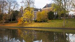 Transitioning (HansPermana) Tags: netherlands holland niederlande water reflection herbst autumn autumnleaves trees utrecht november