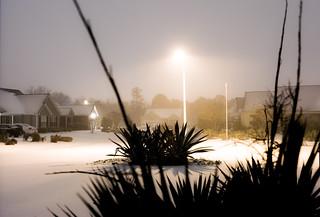 Snowy January Weather