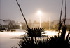 Snowy January Weather (Szhlopp) Tags: snowy snowing weather outside outdoors light street outdoor photography canon eos 5d mk iv sigma prime 50mm sundaylights 2018 new year newyear frozen 365 cold freeze freezing home life storm view orange grey