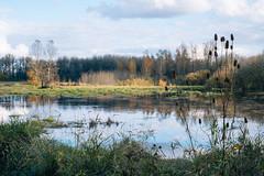 Ankeny - Fall Colors (briangeerlings) Tags: oregon salem nature fuji xe1 zuiko penf fzuiko38mmf18 landscape wetlands ankenynationalwildliferefuge nwr