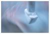 Let me take you down (leo.roos) Tags: metal dranghek safetybarrier crushbarrier crowdcontrolbarriers crowdcontrolbarricades frenchbarriers a7s meyerdomiplan5028 1966 m42 modified darosa leoroos