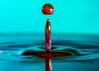 Water moments (Randall Mitchll Photography) Tags: 105mmleans 105mm macro d500 nikond500 nikon waterdropphotos waterdroppictures waterdropphotography color colors waterdroplets waterdrop water