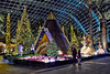 Poinsettia Wishes (chooyutshing) Tags: lavvu decorations lightedup poinsettiawishes floraldisplay christmasfestival2017 flowerdome gardensbythebay baysouth marinabay singapore