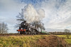 Boxing day Camelot on Freshfield Bank 2 (Nimbus20) Tags: sussex bluebell steam boxingday sunny cold winter train preservation rail england