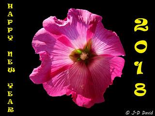 Pour tous les Amis Flickr :-)