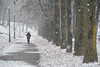 Camminando tra fiocchi di neve - Walking among the snowflakes. (sinetempore) Tags: camminandotraifiocchidineve walkingamongthesnowflakes neve snow torino turin street parcodelvalentino alberi trees uomo man freddo cold people gente