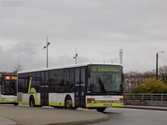 Setra S315NF n°502 (ChristopherSNCF56) Tags: bihan bus setra s315nf transport ubrains brest brestois bibus gouesnou