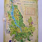 Cayuga Basin Bioregion thumbnail