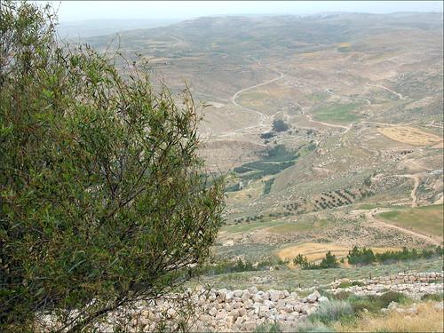 Paysage du Mont Nebo (Jordanie)