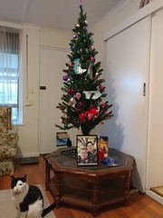 Decorated Tree and Noble