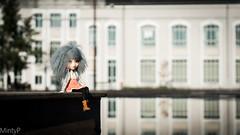 Melba~ (MintyP.) Tags: pullip doll groove obitsu melba custo full fc mohair wig poupée mintyp photography nantes sony nex 6