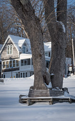 Maine-2017_194 (snlsn) Tags: baysidemaine midcoastmaine offseason winter snow cold