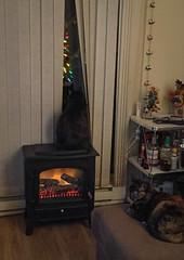 Watching for Santa (Katrina Wright) Tags: img0916 mel cats christmas santa window christmaseve waiting windowwednesday blinds excitement anticipation