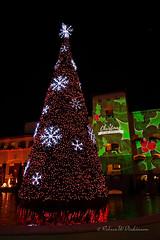 Christmas 2017 at the Scottsdale Princess Resort X (eoscatchlight) Tags: christmas merrychristmas christmasdecoration christmaslights scottsdale arizona princessresort