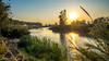 El Júcar (Francisco Chornet) Tags: júcar riola sonystas sony a58 tamronsp1750 atardecer ocaso rio agua valencia laribera albalatdelaribera