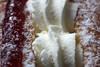 05/01/2018 Cream doughnut (Pat's_photos) Tags: doughnut cream 3652018