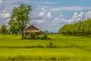 ChiangRai_2272 (JCS75) Tags: asia asie thailand thailande chiangrai canon