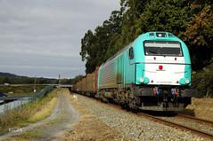 Betanzos (REGFA251013) Tags: comsa ibericargo tren train comboio madera galicia portugal