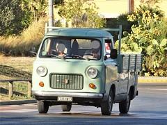 1971 Fiat 850 T Pasino (Alessio3373) Tags: fiat fiat850t fiat850tpasino pasino carrozzeriapasino oldcars classiccars oldvan van furgone autoshite targhenere blackplates