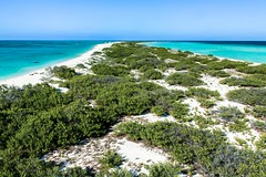 Desterrada (Víctor Argaez) Tags: isladesterrada arrecifealacranes yucatán méxico mar isla arena agua azul cielo canoneosrebelxsi campo reflexión pensamiento nostalgia soledad recuerdos belleza naturaleza parquenacional atolón vida