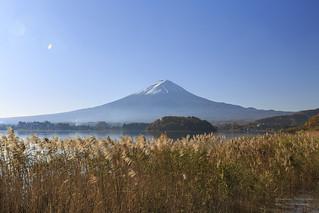 秋味富士 Mt.Fuji, Japan _MG_3804