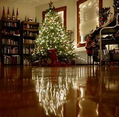 Christmas Decor 2017 (allfalldown) Tags: christmas holidays seasonal home decor tree warm lights lighting ornaments cozy relaxing dim