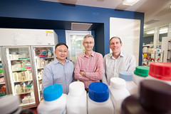 Research project: Biomanufacturing Advanced Animal Feed Supplements (QUT Science and Engineering Faculty) Tags: qut staff portrait profile ian ohara yunfei xi robert speight biomanufacturing project advanced animal feed supplements dr earth environmental biological sciences eebs cpme chemistry physics mechanical engineering associate professor