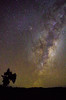 (Caroline Balme Photography) Tags: ohakune newzealand travelaroundtheworld roadtrip whv