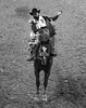 0246937475-95-Cowboy Bareback Riding at the 2017 National Finals Rodeo-24-Black and White (Jim There's things half in shadow and in light) Tags: 2017 america american lasvegas nfr nationalfinals nevada rodeo southwest thomasandmack usa unitedstates action animal cowboy december sports western blackandwhite horse barebackriding bucking roughstock