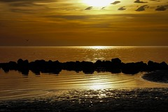 Rocks in the Gulf (Sonia Argenio Photography) Tags: florida gulfofmexico ocean dreaming reflections water evening sunset color vivid coast ilovethecoast coastalsunsets dreamysky seascape