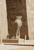 Colossal Statue of Horus (Chris Irie) Tags: horus temple egypt statue