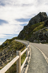Camino en la costa gallega (Noelia Deosdad) Tags: landscape beauty way highway costa galicia rias altas acantilado españa atlantico cliff baya berry