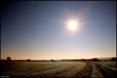 Dissé Sous Le Lude (Sarthe) (gondardphilippe) Tags: dissésouslelude sarthe maine paysdelaloire paysage landscape nature campagne pelouse champ field ciel soleil sundaylights ngc