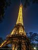 Thoughts of Paris (Michael Guttman) Tags: paris france eiffeltower lights bluehour trees silhouettes cityoflight