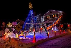 DSC_0573 (Copy) (pandjt) Tags: ottawa orlèans on ontario taffylane christmas christmaslights christmasseason christmasspirit lights lighting nightphotography night ledlights ledlighting house colours colors decorations winterscenic winter winterphotography