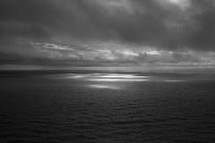 See the light (Chris Hooton) Tags: waitakereranges westauckland auckland nikond750 nikon newzealand northisland waitakere mercerbayloopwalk