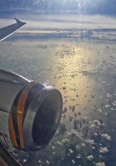 Airbus A319 wing and engine of Tiger Airways (Scoot) over the Gulf of Thailand en route from Singapore to Bangkok (UweBKK (α 77 on )) Tags: airbus a319 wing engine tiger airways gulf thailand sea ocean sun clouds flight aircraft airplane plane aviation singapore changi suvarnabhumi samsung galaxy j7