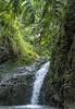 George of the Jungle (acase1968) Tags: mud hike maunawili falls nikon d750 nikkor 24120mm f4g oahu hawaii kailua trail crowded bugs dive flip