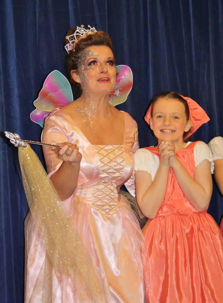 cinderella fairy godmother and emily
