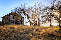 Patience (KPortin) Tags: htt truck trees grass weeds abandonedhouse sunstar explored