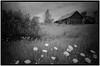 img078 (hobart.paddler) Tags: greenbay abandoned barn n90 3200 tmax