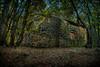 Crnike House (dokson_) Tags: croatia krk island house landscape ruin blending hdr summer travel europe pentax abandoned