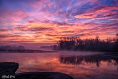 Alba a Ticino (alfvet) Tags: fiumeticino parcodelticino vigevano veterinarifotografi alba sunrise fiume river acqua sole water sun morning nuvole colori